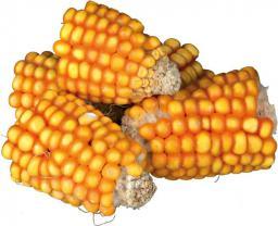 Trixie Kolby kukurydzy 300 g
