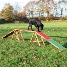 Kładka dla psów 'Dog Activity Agility , 456 × 64 × 30 cm
