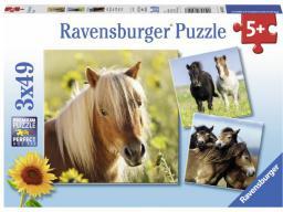 Ravensburger Puzzle 3x49el Kochane Konie (080113)