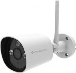 Kamera IP Ferguson Smart EYE 300IP