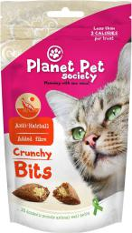 PLANET PET KOT 40g przys. ANTI HAIRBALL