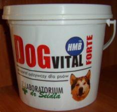 Dr Seidel DOG VITAL FORTE 400g