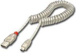 Kabel USB LINDY USB A/mini USB, 2m (31925)