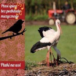 Ptasi śpiew bez podkładu muz. Ptaki na wsi CD - 240340