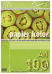 Blok biurowy KRESKA Papier kolorowy A4/100 popielaty (WIKR-954479)