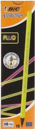 Bic Ołówek Evolution Fluo bez gumki - WIKR-1051976