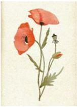 HENRY Karnet B6 Kwiaty 05