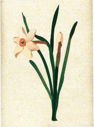 HENRY Karnet uniwersalny B6 Kwiaty- chabry - WIKR-998967