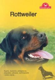 Pies na medal. Rottweiler