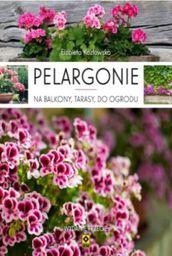 Pelargonie na balkony, tarasy i do ogrodu - 228693