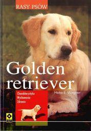 Rasy psów - Golden retriver. Charakterystyka.. - 39713
