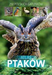 Atlas ptaków - 105161
