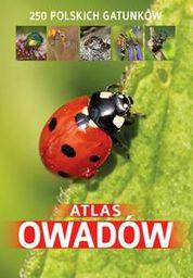 Atlas owadów. 250 polskich gatunków - 152179