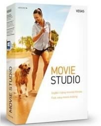 Magix VEGAS Movie Studio 14 (822975)