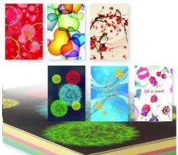 Polsirhurt Notes A6 kolorowy pastelowy YP70100-P