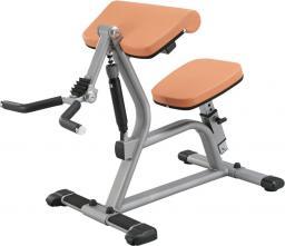 inSPORTline Maszyna na mięśnie bicepsa CBC400 Body Solid Kolor pomarańczowy (2736-2)