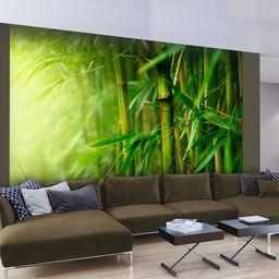 Artgeist Fototapeta - dżungla - bambus 400x309