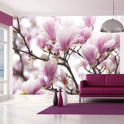 Artgeist Fototapeta - Gałązka kwitnącej magnolii 350x270