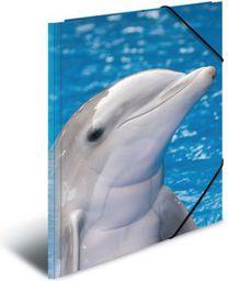 Herma Teczka Sammelmappe A3 Delfin Polypropylen