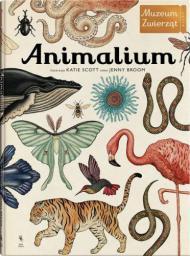 Animalium wyd.3 (208981)