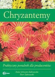 Chryzantemy. Praktyczny poradnik
