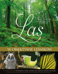 Las w obiektywie leśników (147232)