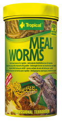 Tropical MEAL WORMS 100ML (29559)