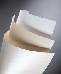 Argo Papier ozdobny Galeria Papieru bali A4 kremowy 220g 20 ark