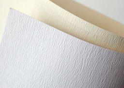 Argo Papier ozdobny  Galeria Papieru atlanta biały A4 230g 20 arkuszy