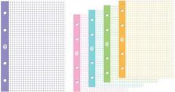 Interdruk Wkład do segregatora A4/50K kratka kolor (5szt) (236037)