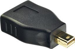 Adapter AV Lindy DisplayPort - miniDisplayPort (41077)