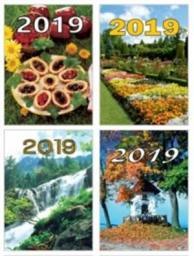 BESKIDY Kalendarz 2019 Zdzierak Mix Beskidy (250871)