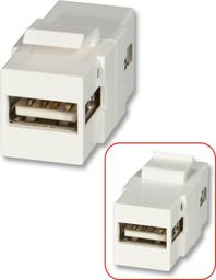 Lindy LINDY USB A Double Female keystone module for wall boxes - 60553