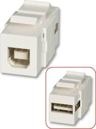 Lindy USB A/B Double Female keystone module for wall boxes - 60555