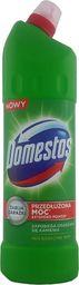 Domestos Pine Fresh płyn czyszcząco-dezynfekujący 1250ML 102634 - 5996037001903