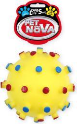 PET NOVA Dentball Yellow XL 12cm