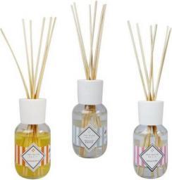 INFINITA Basic Mandarancio perfumy do wnętrz w postaci pachnących patyczków Mandarynka&Pomarańcza 100ml