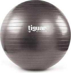 Tiguar Piłka gimnastyczna z wypełnieniem Body Ball 3S 70cm szara