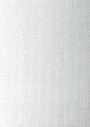 Opus Karton Ozdobny A4 20 ark. (PLECIONY230A4BIA)