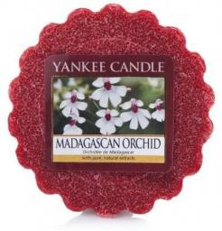 Yankee Candle Wax wosk Madagascan Orchid  22g