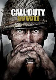 Call of Duty: WWII, ESD
