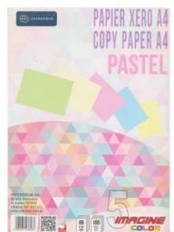 Papier Interdruk  ksero A4,  5 kolorów Pastel, 100 kartek  (203221)