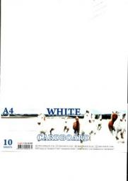 Fresh Karton biały A4