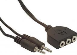 Gembird MiniJack 3.5mm x2 - MiniJack 3.5mm x3 1m czarny (CCMIC1)
