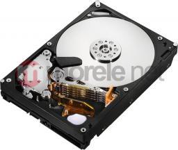 """Dysk Hitachi Ultrastar A7K2000 1 TB 3.5"""" SATA II (HUA722010CLA330)"""
