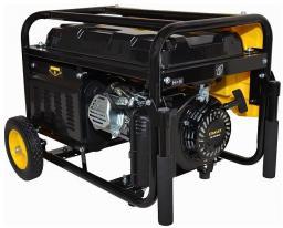 Stanley Generator (SG3100)