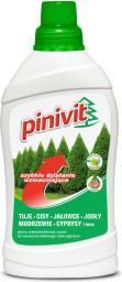 Inco Nawóz Pinivit do roślin iglastych 1 kg