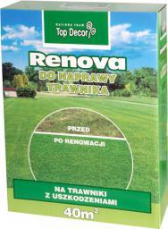 Top Decor Trawa Renova mieszanka renowacyjna 1kg (TD9615)