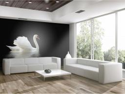 Artgeist Fototapeta - łabędź czarno-biały 300x231