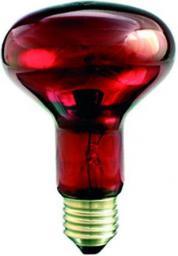 Helios Promiennik podczerwieni E27 75W 80mm R-80 rubin do terrarium (PRO-1466)